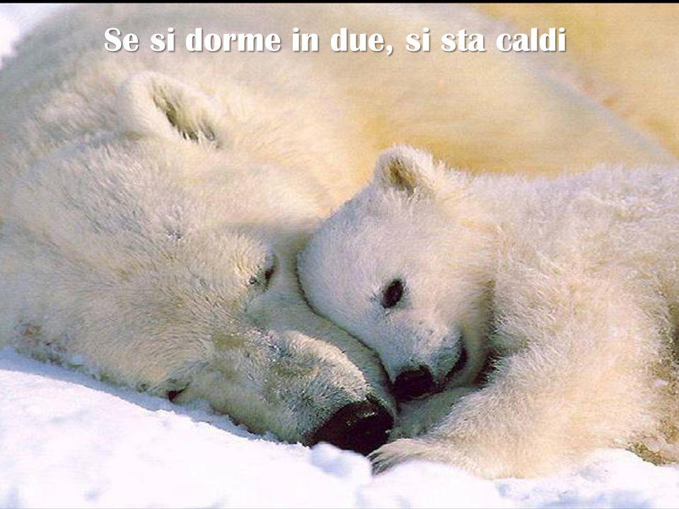 Se si dorme in due, si sta caldi