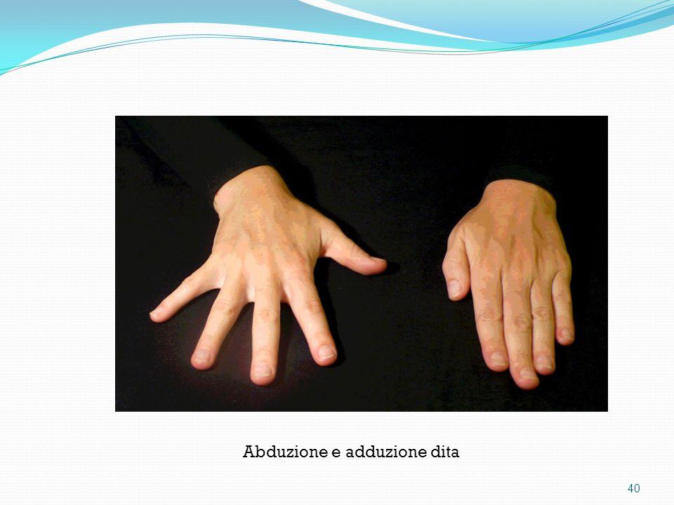 Abduzione e adduzione dita 40