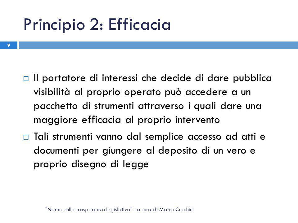 Principio 2: Efficacia  Il portatore di interessi che decide di dare pubblica visibilità al proprio operato può accedere a un pacchetto di strumenti