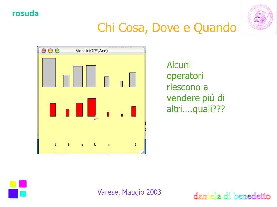rosuda Varese, Maggio 2003 Alcuni operatori riescono a vendere piú di altri….quali??? Chi Cosa, Dove e Quando