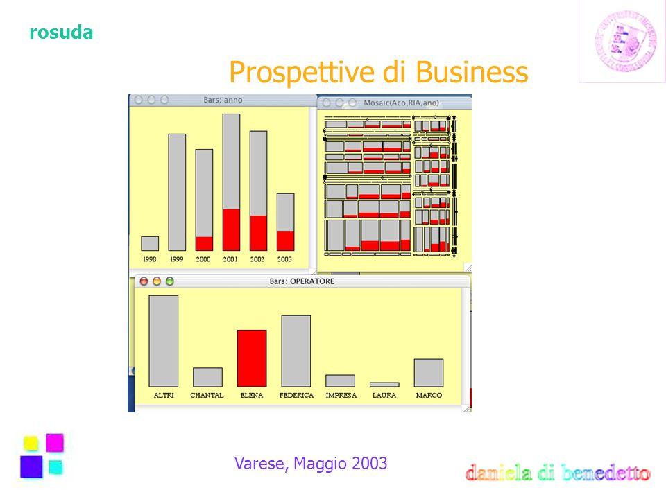 rosuda Varese, Maggio 2003 Prospettive di Business