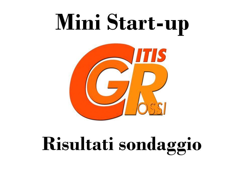 Mini Start-up Risultati sondaggio