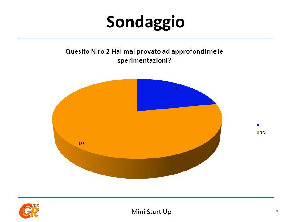 Sondaggio Mini Start Up 7