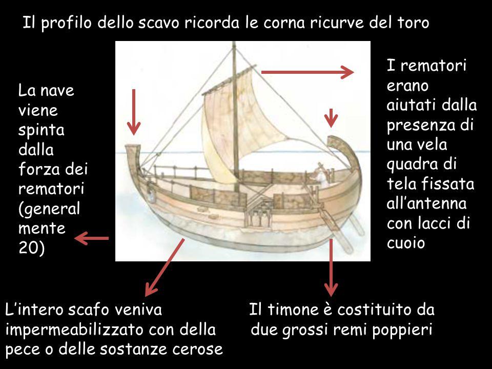 Il profilo dello scavo ricorda le corna ricurve del toro La nave viene spinta dalla forza dei rematori (general mente 20) I rematori erano aiutati dal