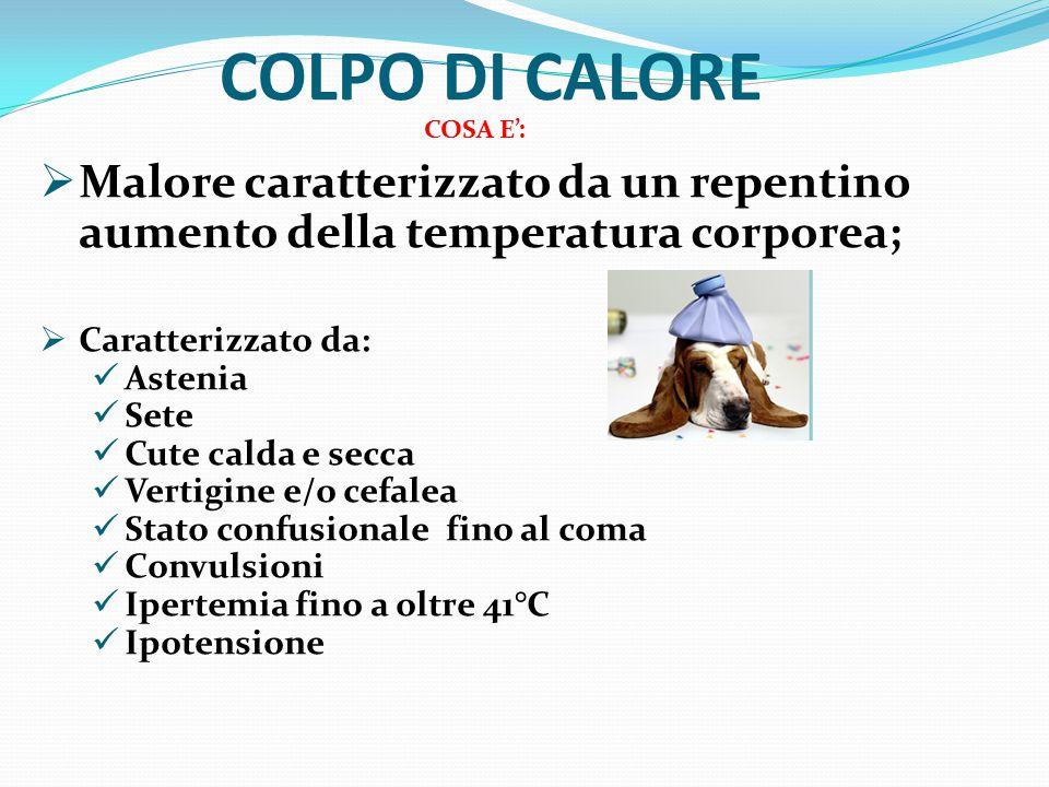 COLPO DI CALORE COSA E':  Malore caratterizzato da un repentino aumento della temperatura corporea;  Caratterizzato da: Astenia Sete Cute calda e se