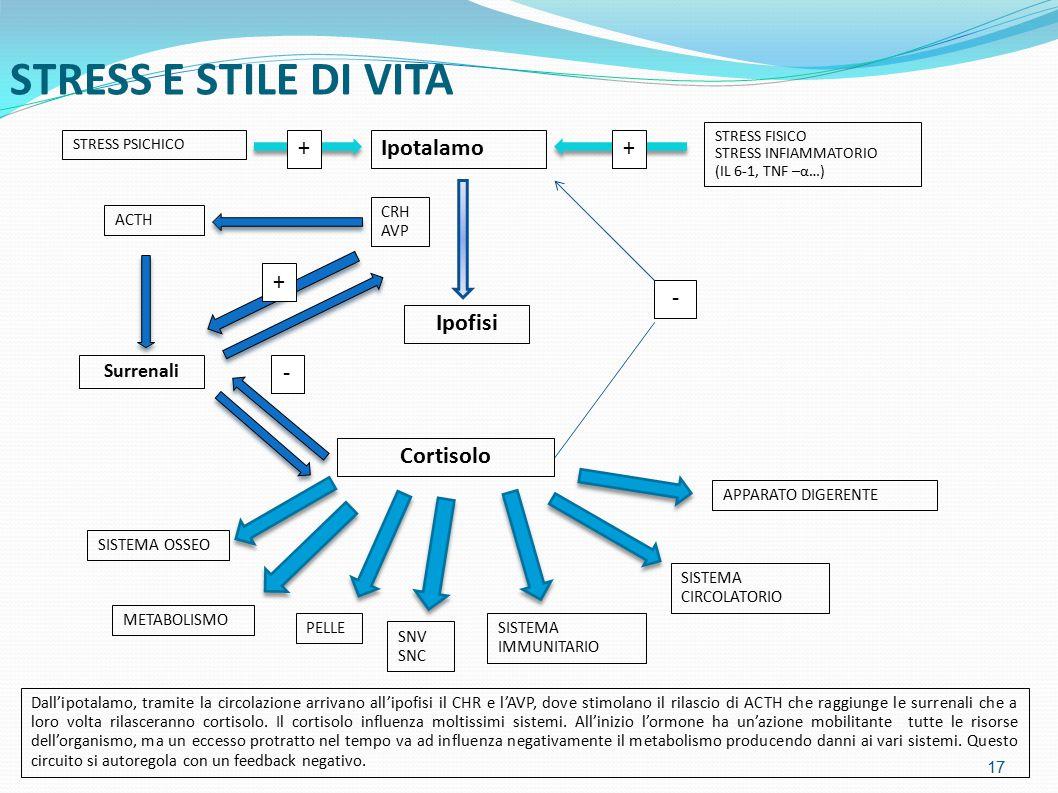 STRESS E STILE DI VITA 17 STRESS PSICHICO Ipotalamo+ Ipofisi STRESS FISICO STRESS INFIAMMATORIO (IL 6-1, TNF –α…) - Cortisolo CRH AVP + ACTH Surrenali + - SISTEMA OSSEO METABOLISMO PELLE SNV SNC SISTEMA IMMUNITARIO SISTEMA CIRCOLATORIO APPARATO DIGERENTE Dall'ipotalamo, tramite la circolazione arrivano all'ipofisi il CHR e l'AVP, dove stimolano il rilascio di ACTH che raggiunge le surrenali che a loro volta rilasceranno cortisolo.
