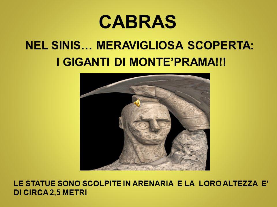 CABRAS NEL SINIS… MERAVIGLIOSA SCOPERTA: I GIGANTI DI MONTE'PRAMA!!.