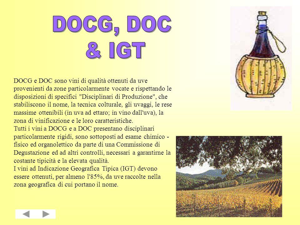 In alcuni vini a DOCG, a DOC e a IGT il nome della zona di produzione si accompagna a quella di 1 o 2 varietà di vite.