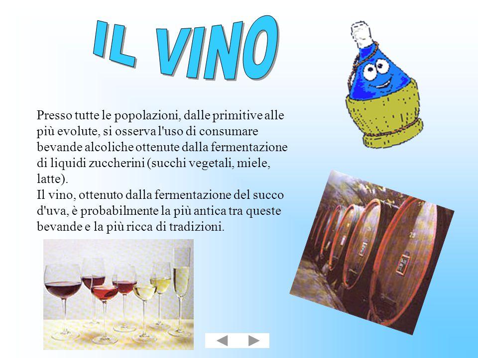 E uno degli elementi più chiacchierati fra quelli che entrano a far parte della composizione del vino.