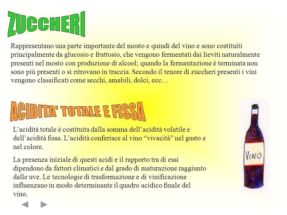 Rappresentano la parte colorata e colorante del vino.