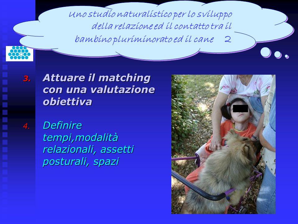 3. Attuare il matching con una valutazione obiettiva 4. Definire tempi,modalità relazionali, assetti posturali, spazi Uno studio naturalistico per lo