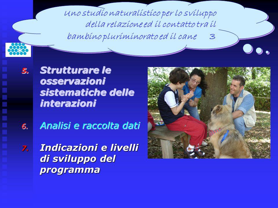 5. Strutturare le osservazioni sistematiche delle interazioni 6. Analisi e raccolta dati 7. Indicazioni e livelli di sviluppo del programma Uno studio
