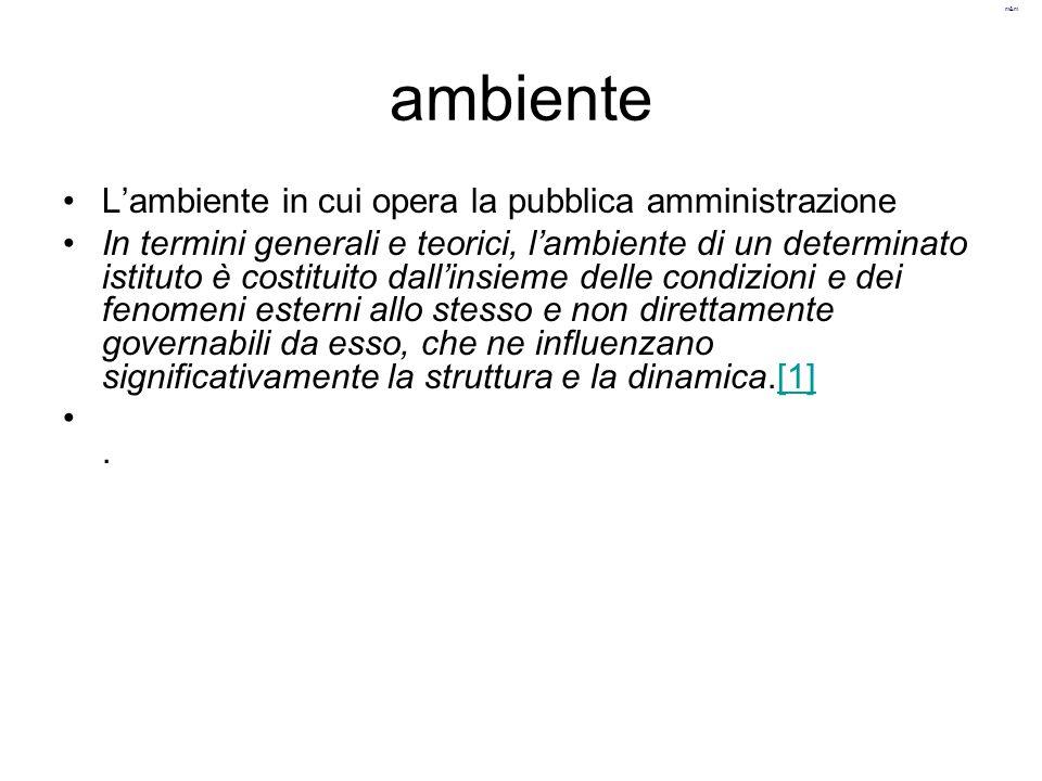 m&m ambiente L'ambiente in cui opera la pubblica amministrazione In termini generali e teorici, l'ambiente di un determinato istituto è costituito dal