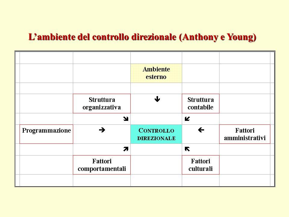 L'ambiente del controllo direzionale (Anthony e Young)
