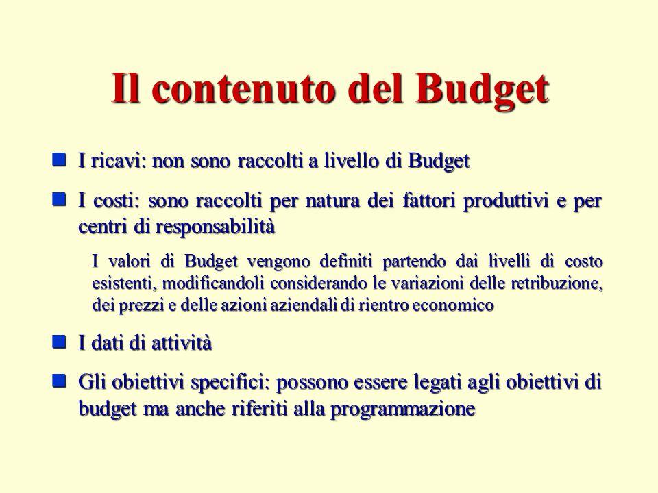 Il contenuto del Budget I ricavi: non sono raccolti a livello di Budget I ricavi: non sono raccolti a livello di Budget I costi: sono raccolti per nat