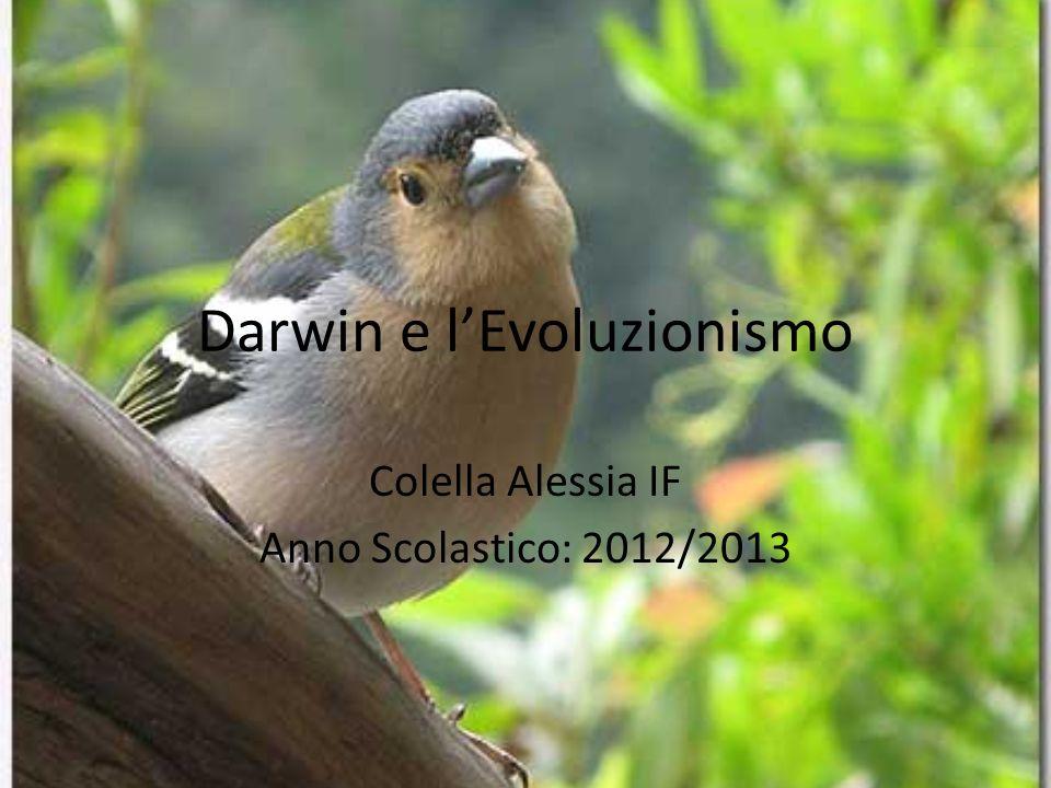 Darwin e l'Evoluzionismo Colella Alessia IF Anno Scolastico: 2012/2013