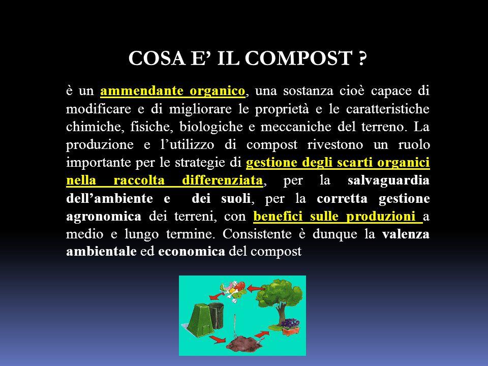 COSA E' IL COMPOST ? è un ammendante organico, una sostanza cioè capace di modificare e di migliorare le proprietà e le caratteristiche chimiche, fisi