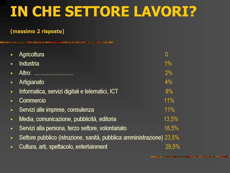 IN CHE SETTORE LAVORI? (massimo 2 risposte)  Agricoltura 0  Industria 1%  Altro:........................... 2%  Artigianato 4%  Informatica, serv