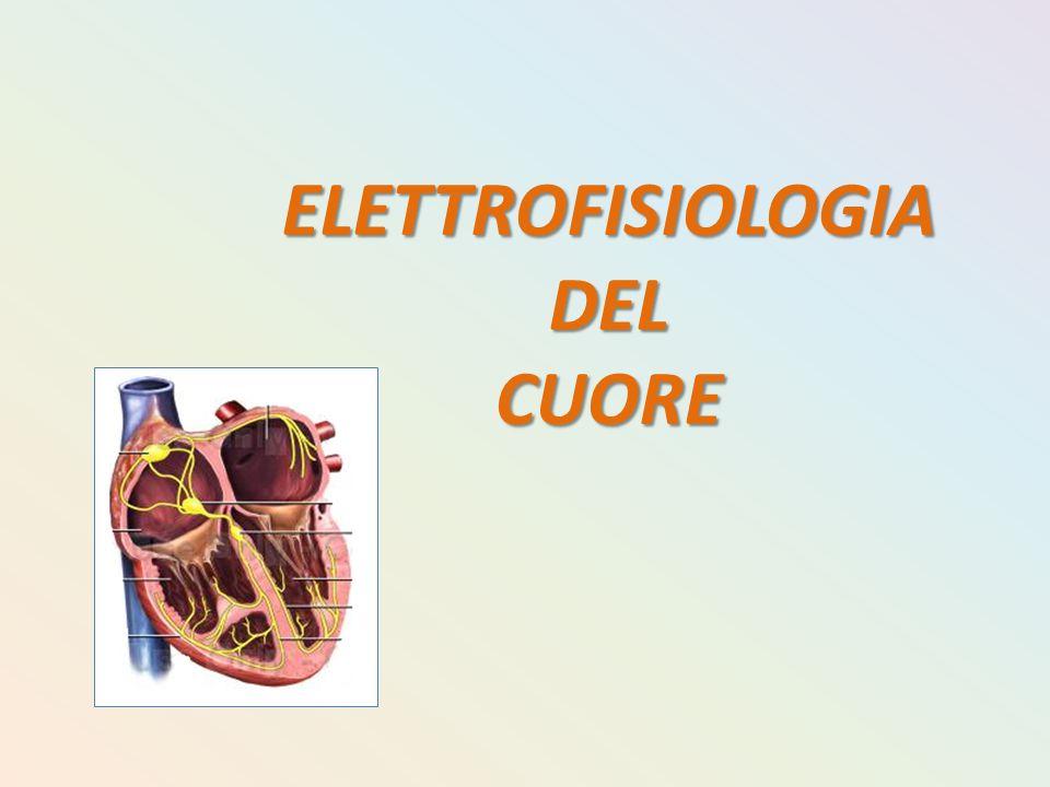 ELETTROFISIOLOGIA DEL CUORE