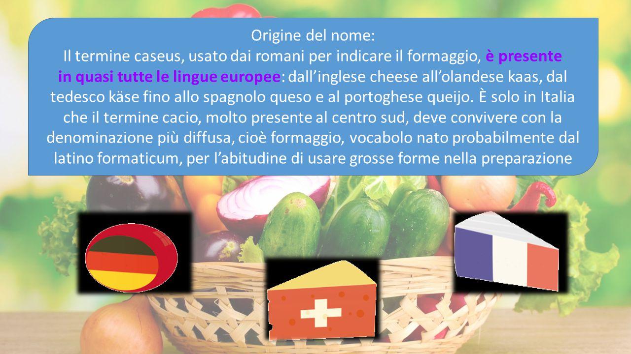 Origine del nome: Il termine caseus, usato dai romani per indicare il formaggio, è presente in quasi tutte le lingue europee: dall'inglese cheese all'