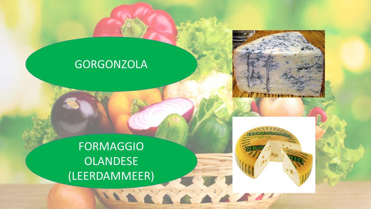 GORGONZOLA FORMAGGIO OLANDESE (LEERDAMMEER)