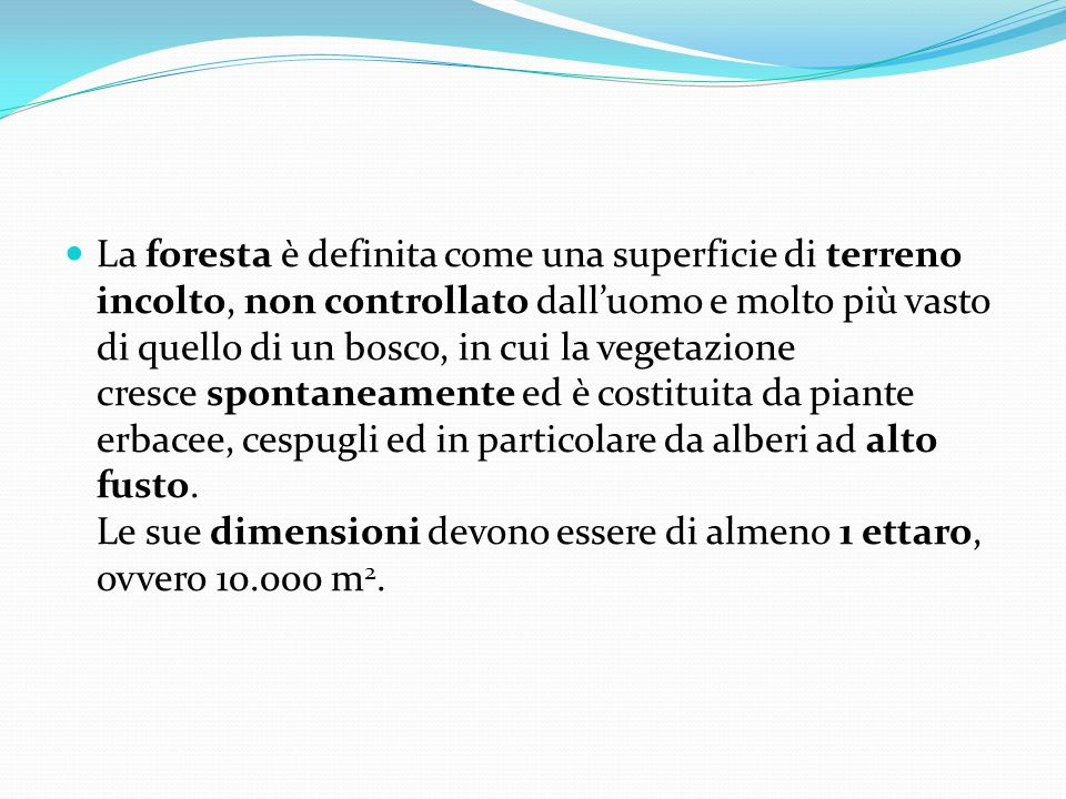 La foresta è definita come una superficie di terreno incolto, non controllato dall'uomo e molto più vasto di quello di un bosco, in cui la vegetazione
