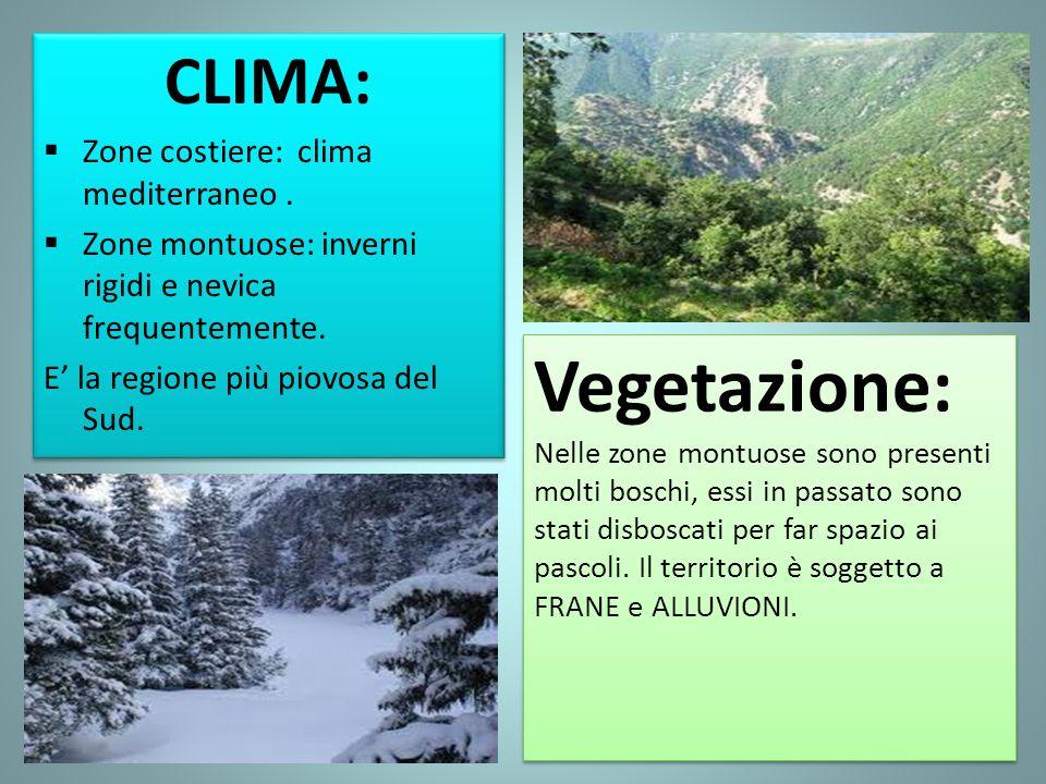 Vegetazione: Nelle zone montuose sono presenti molti boschi, essi in passato sono stati disboscati per far spazio ai pascoli. Il territorio è soggetto