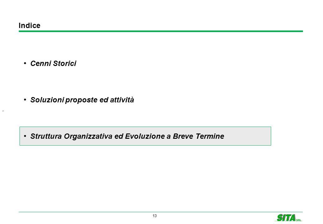 13 Indice ' Cenni Storici Soluzioni proposte ed attività Struttura Organizzativa ed Evoluzione a Breve Termine