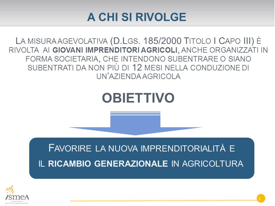 A CHI SI RIVOLGE L A MISURA AGEVOLATIVA (D.L GS.
