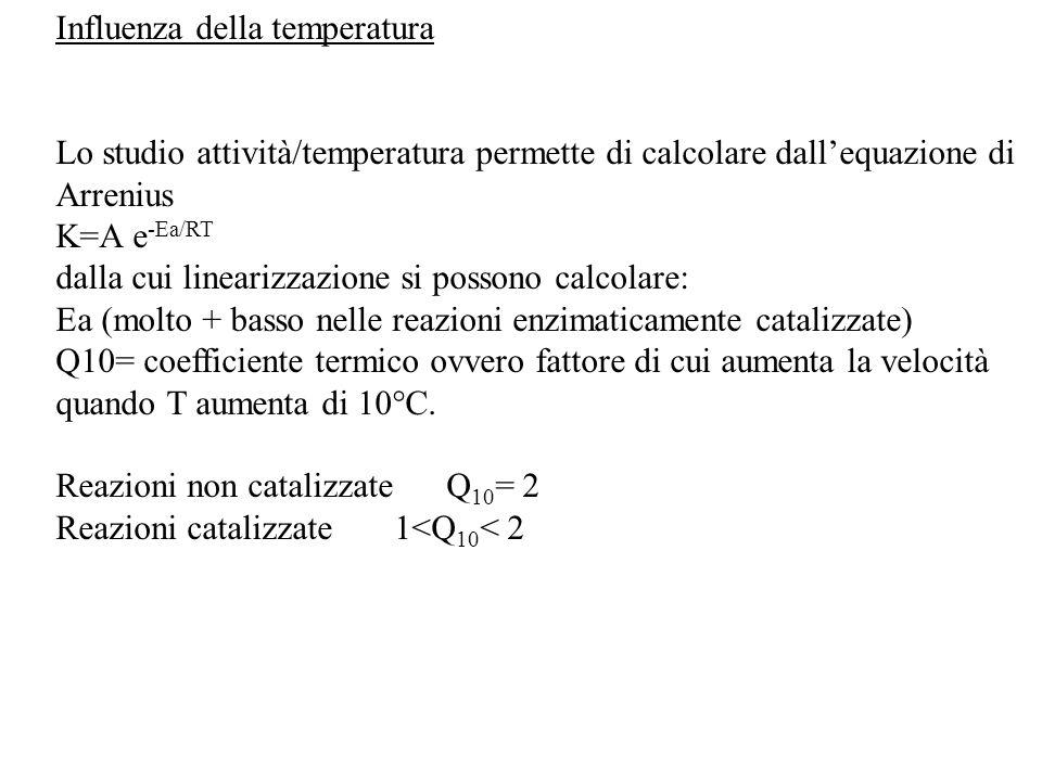 Influenza della temperatura Lo studio attività/temperatura permette di calcolare dall'equazione di Arrenius K=A e -Ea/RT dalla cui linearizzazione si