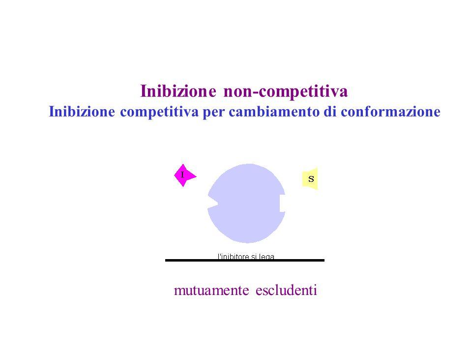 Inibizione non-competitiva Inibizione competitiva per cambiamento di conformazione mutuamente escludenti