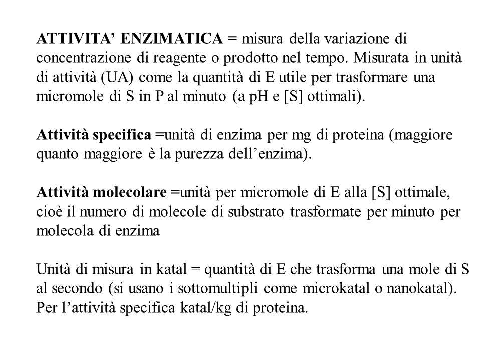 ATTIVITA' ENZIMATICA = misura della variazione di concentrazione di reagente o prodotto nel tempo. Misurata in unità di attività (UA) come la quantità