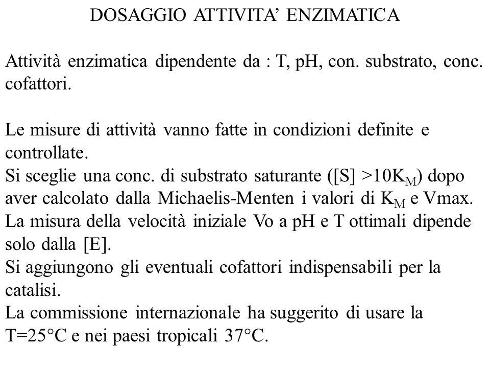 DOSAGGIO ATTIVITA' ENZIMATICA Attività enzimatica dipendente da : T, pH, con. substrato, conc. cofattori. Le misure di attività vanno fatte in condizi