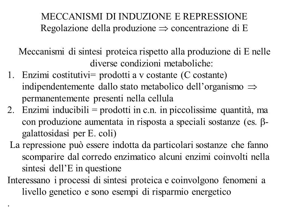 MECCANISMI DI INDUZIONE E REPRESSIONE Regolazione della produzione  concentrazione di E Meccanismi di sintesi proteica rispetto alla produzione di E