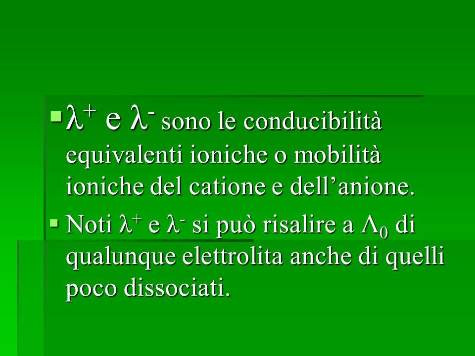  λ + e λ - sono le conducibilità equivalenti ioniche o mobilità ioniche del catione e dell'anione.  Noti λ + e λ - si può risalire a Λ 0 di qualunqu