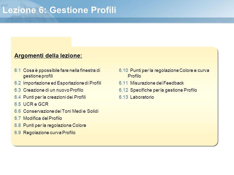 Argomenti della lezione: Lezione 6: Gestione Profili 6.1 Cosa è ppossibile fare nella finestra di gestione profili 6.2 Importazione ed Esportazione di