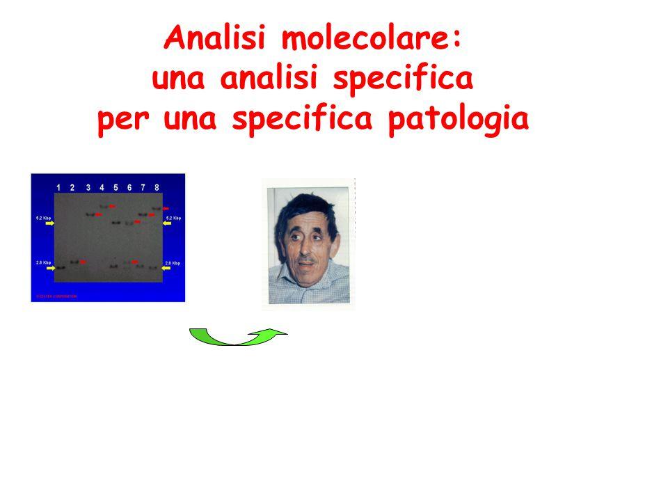 Elettroforesi su gel Si preparano i gel di agarosio che costituiscono una matrice a setaccio Ad un'estremità del gel vengono caricati i campioni da analizzare e viene applicato un campo elettrico La direzione di migrazione dipende dalla carica delle molecole: gli acidi nucleici, carichi negativamente, migreranno verso il polo positivo La velocità di migrazione dipende dalla dimensione del frammento di acido nucleico Si ottiene quindi la separazione dei frammenti di DNA o RNA esclusivamente sulla base delle loro dimensioni (peso molecolare)