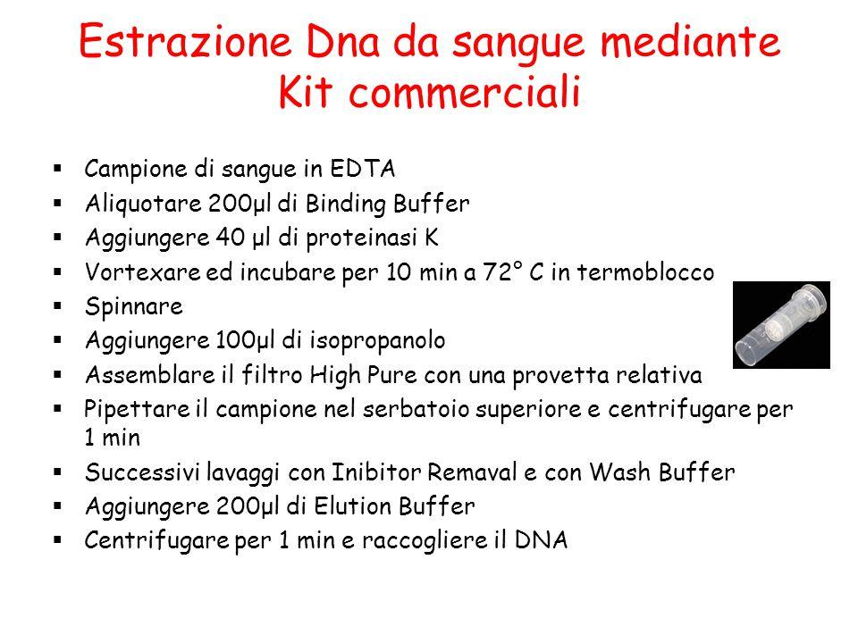 Estrazione Dna da sangue mediante Kit commerciali  Campione di sangue in EDTA  Aliquotare 200μl di Binding Buffer  Aggiungere 40 μl di proteinasi K