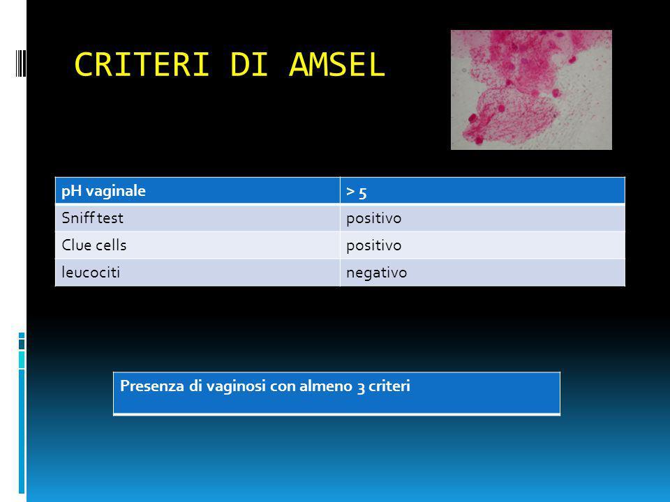 CRITERI DI AMSEL pH vaginale> 5 Sniff testpositivo Clue cellspositivo leucocitinegativo Presenza di vaginosi con almeno 3 criteri
