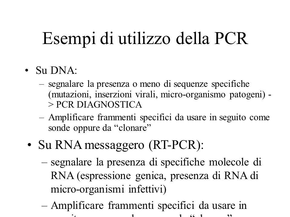 Esempi di utilizzo della PCR Su DNA: –segnalare la presenza o meno di sequenze specifiche (mutazioni, inserzioni virali, micro-organismo patogeni) - >