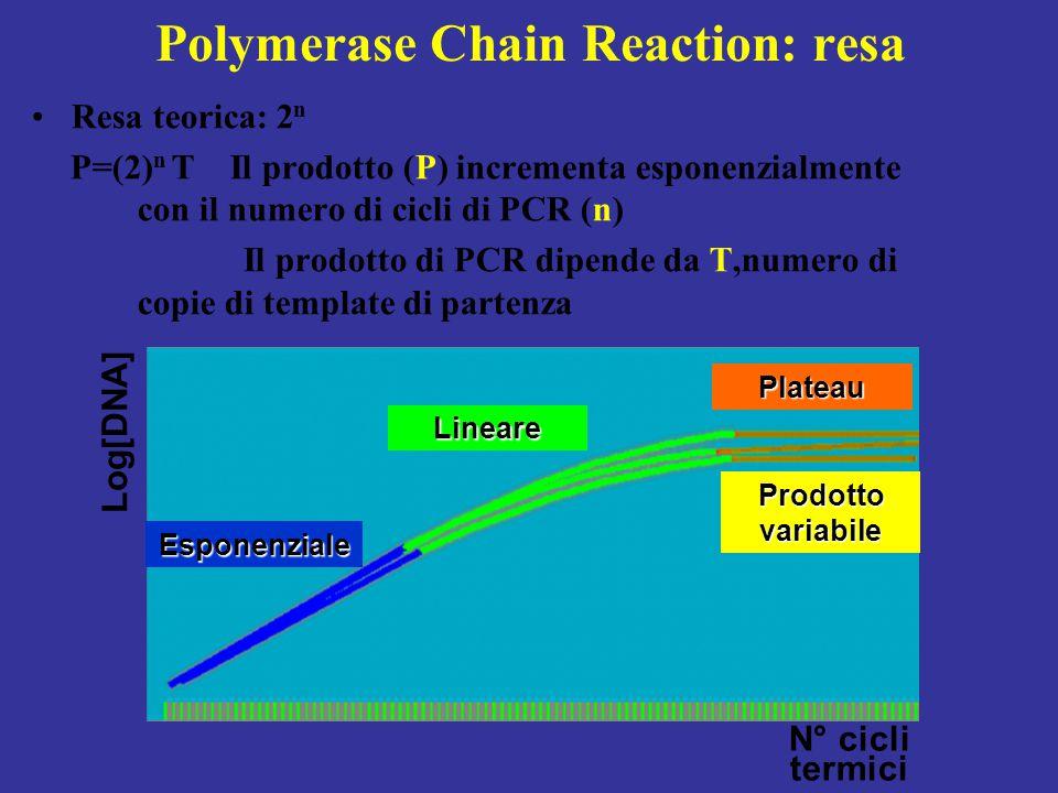 Polymerase Chain Reaction: resa Resa teorica: 2 n P=(2) n T Il prodotto (P) incrementa esponenzialmente con il numero di cicli di PCR (n) Il prodotto