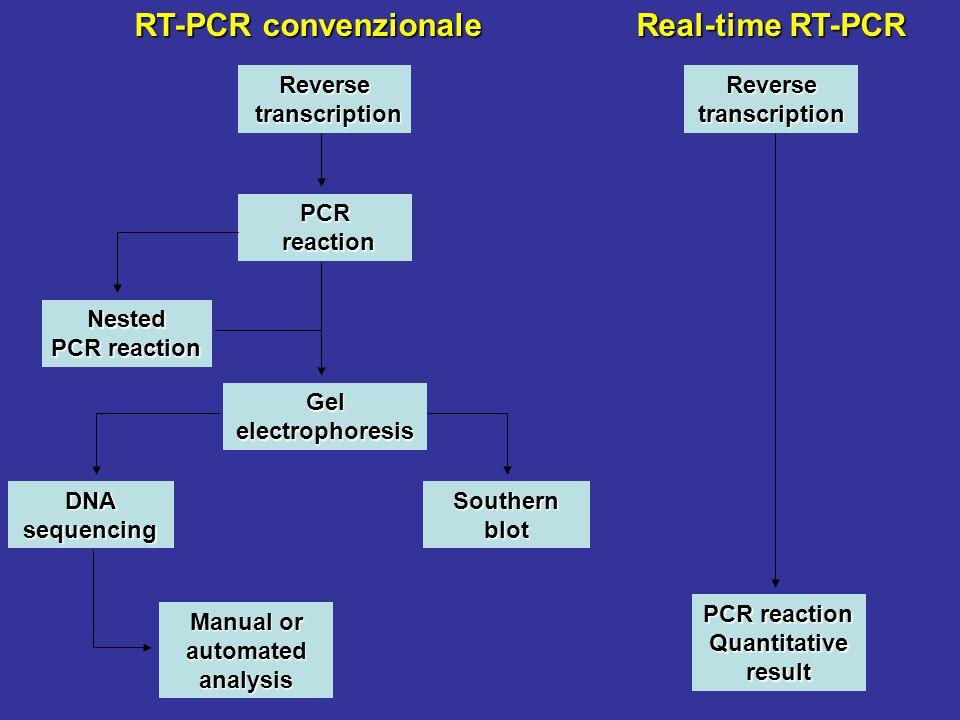 RT-PCR convenzionale Manual or automated analysis Reverse transcription transcription PCR reaction reaction Nested PCR reaction Gelelectrophoresis DNA