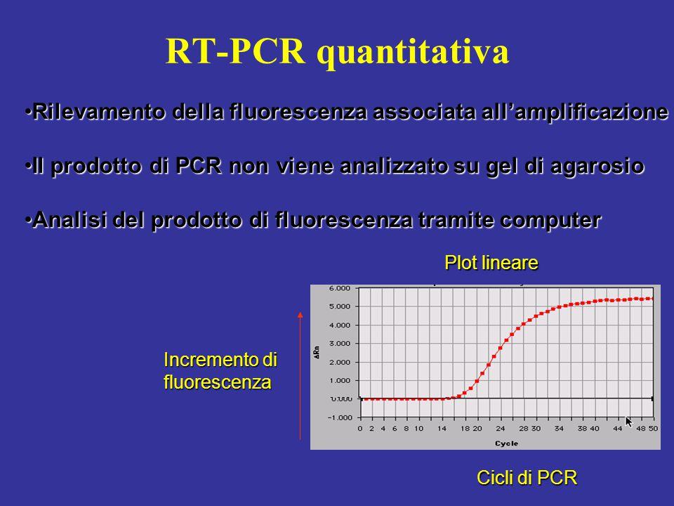 RT-PCR quantitativa Plot lineare Incremento di fluorescenza Cicli di PCR Rilevamento della fluorescenza associata all'amplificazioneRilevamento della