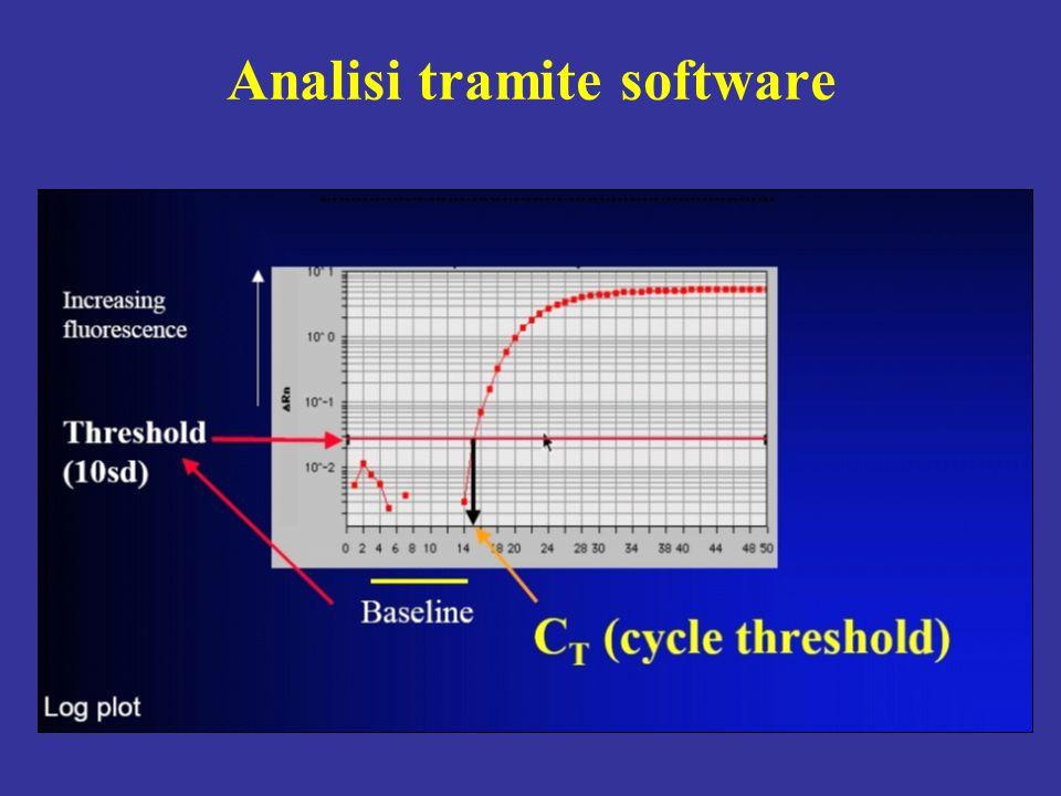 Analisi tramite software