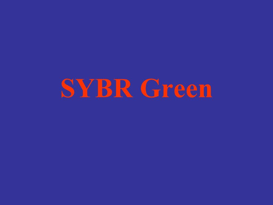 SYBR Green