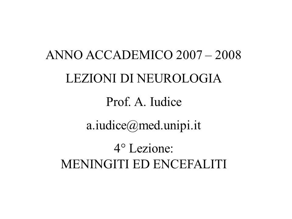 ANNO ACCADEMICO 2007 – 2008 LEZIONI DI NEUROLOGIA Prof. A. Iudice a.iudice@med.unipi.it 4° Lezione: MENINGITI ED ENCEFALITI
