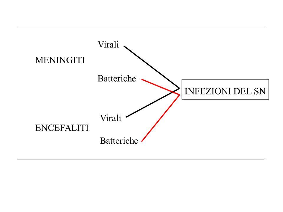 MENINGITI ENCEFALITI Virali Batteriche Virali Batteriche INFEZIONI DEL SN