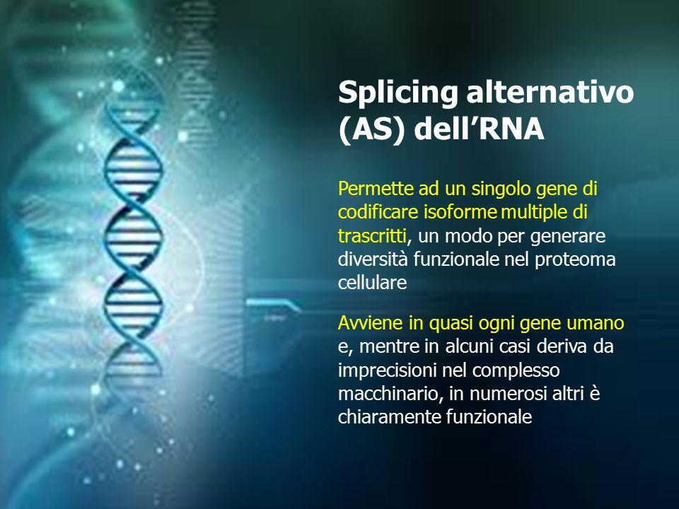 Splicing alternativo (AS) dell'RNA Permette ad un singolo gene di codificare isoforme multiple di trascritti, un modo per generare diversità funzional