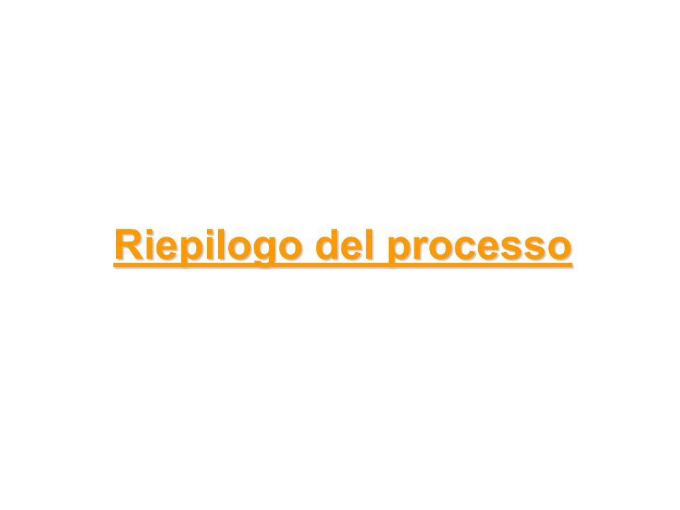 Riepilogo del processo Riepilogo del processo