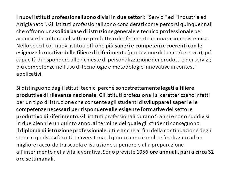 I nuovi istituti professionali sono divisi in due settori: Servizi ed Industria ed Artigianato .